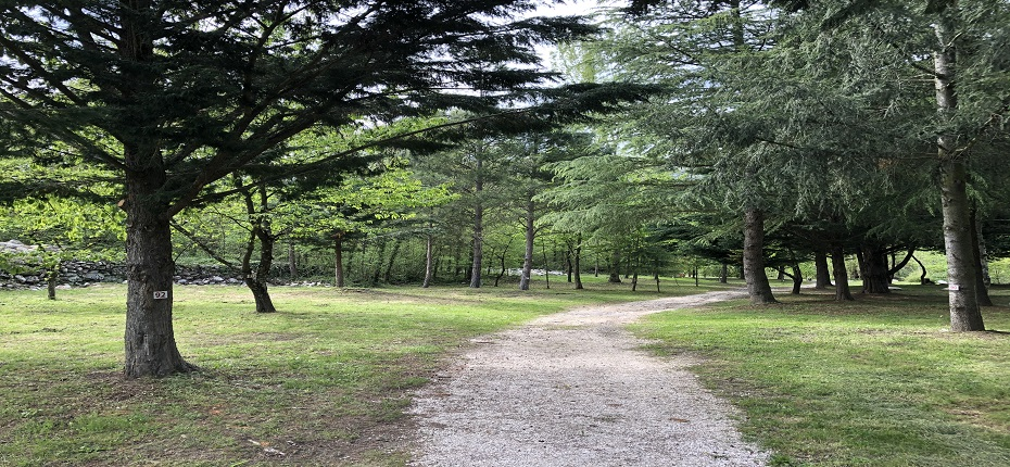 Emplacement Camping DEL BOSC 5